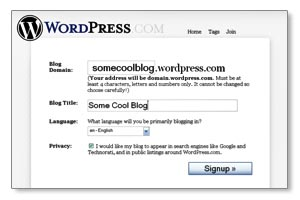 Select Your Blog Sub-domain and Title